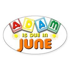 Adam is Due in June Decal