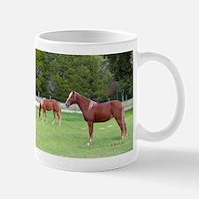 Tennessee Walkers Horse Mugs