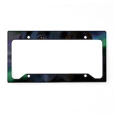 BlackLab17x11 License Plate Holder