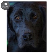 BlackLabFLipFlops Puzzle