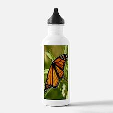 62 copy Water Bottle