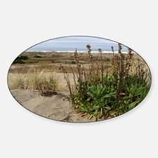 beachlandscapelaptopskin Decal