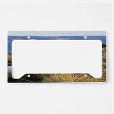 img030_edited-3 License Plate Holder