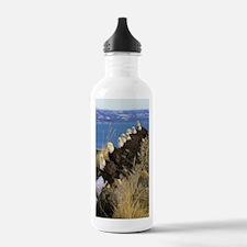 img030_edited-7 Water Bottle