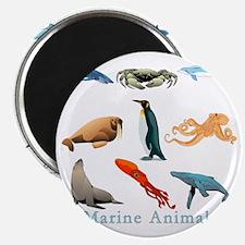 Marine Animals-10x10_apparel Magnet