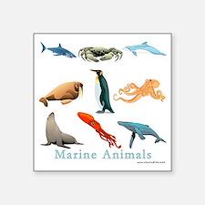"Marine Animals-10x10_appare Square Sticker 3"" x 3"""