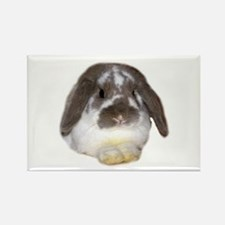 """Bunny 1"" Rectangle Magnet"