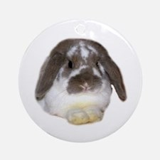 """Bunny 1"" Ornament (Round)"