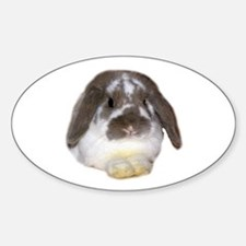 """Bunny 1"" Oval Decal"