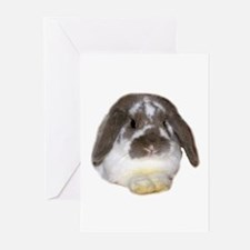 """""""Bunny 1"""" Greeting Cards (Pk of 10)"""