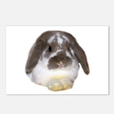 """""""Bunny 1"""" Postcards (Package of 8)"""