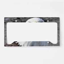 Bald Eagle Provider of Streng License Plate Holder