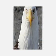 Bald Eagle Provider of Strength Rectangle Magnet