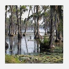 swamp Tile Coaster