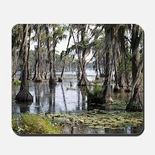 swamp Mousepad