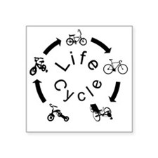"""life Cycle3 Square Sticker 3"""" x 3"""""""