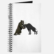 Bull vs. Bear Markets Journal