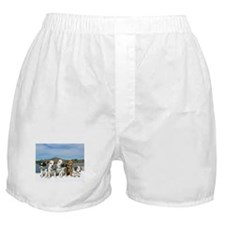 STAR0020 Boxer Shorts