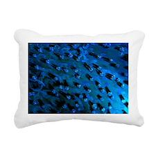 DSC_0081X-Poster Rectangular Canvas Pillow