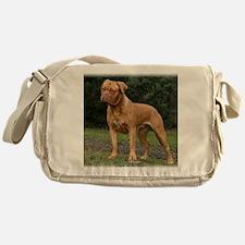 Dogue de Bordeaux 9Y201D-193 Messenger Bag