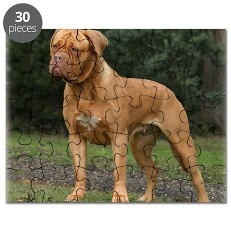 Dogue de Bordeaux 9Y201D-193 Puzzle