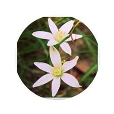 """White Flowers 3.5"""" Button"""