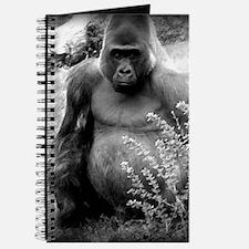 gorilla blanket Journal