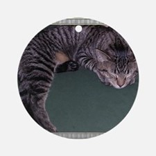 Napping Cat-Scroll-M Round Ornament