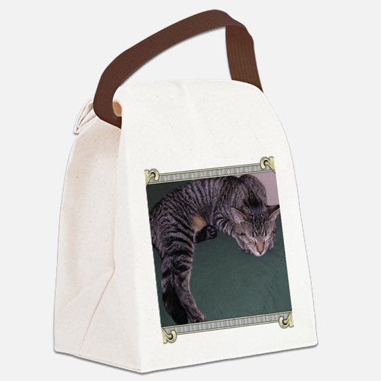 Napping Cat-Scroll-M Canvas Lunch Bag