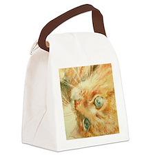 jaffa in cp 001  print siz2crop Canvas Lunch Bag