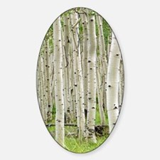 ASPEN-JOURNAL Sticker (Oval)