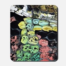 lg-snake-journal Mousepad