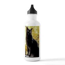mojo2-journal Water Bottle