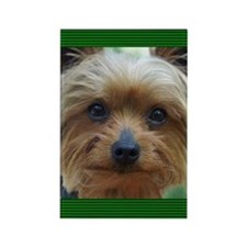 YorkshireTerrierJournal Rectangle Magnet