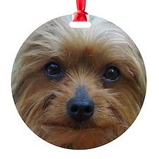 YorkshireTerrierMousePad Ornament
