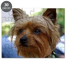 YorkieMousepad Puzzle