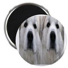 Great Pyr flipflop Magnet