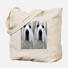 Great Pyr flipflop Tote Bag