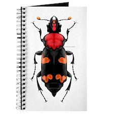 Amer. Burying Beetle Journal