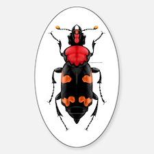 Amer. Burying Beetle Oval Stickers