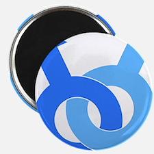 Designs-GLBT_male Magnet