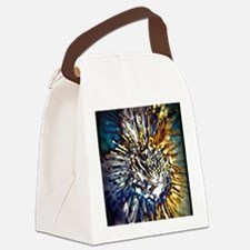 Radiance Canvas Lunch Bag