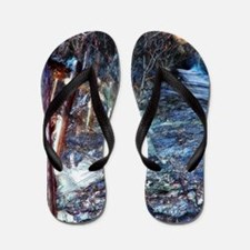 Dark Luminosity Flip Flops