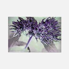 Purple Passion Rectangle Magnet