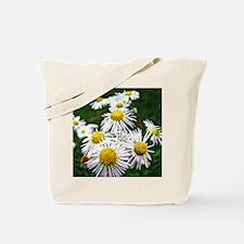 Daisy Fleabanes Tote Bag