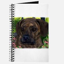 Cute Catahoula leopard dog art Journal