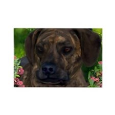 Cute Brindle catahoula leopard dog Rectangle Magnet