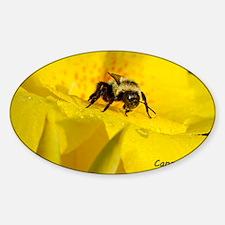 BeeCanna_laptop Sticker (Oval)