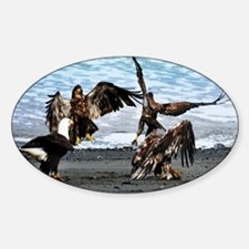 Eagles Greeting or Conflict Decal