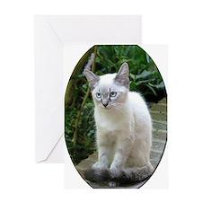 Blue Eyed Kitten oval mat.p... Greeting Card